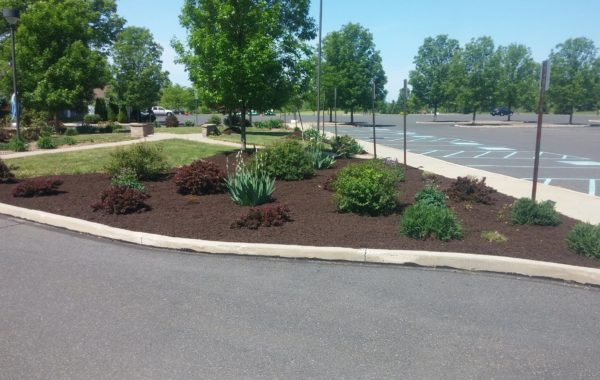Landscaping Committee